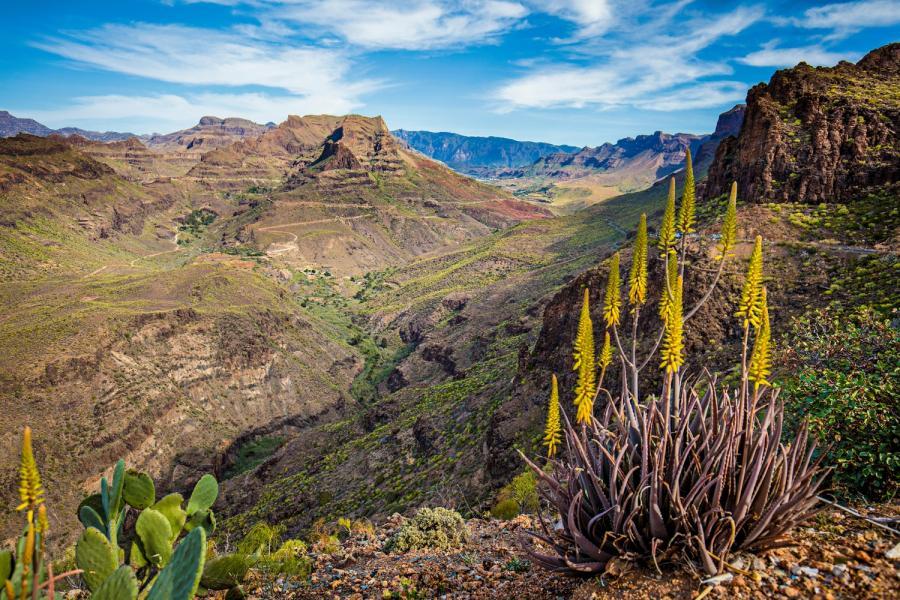Gran Canaria, Dolina Degollada de Las Yeguas
