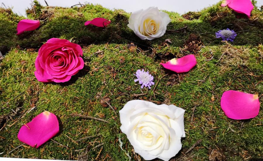 Kwiaty sfotografowane P20 Pro