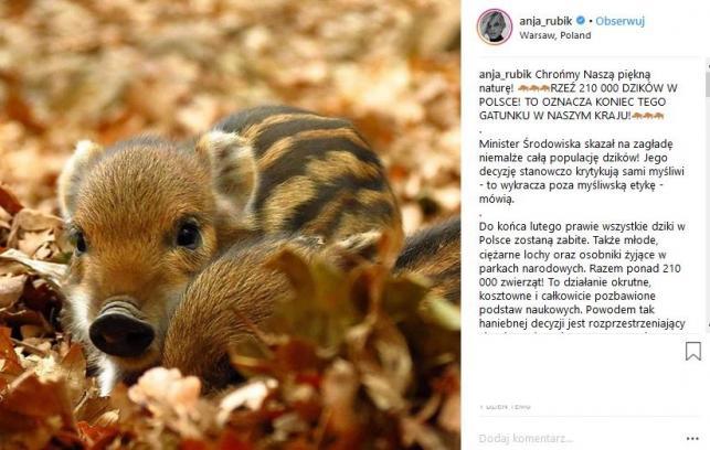 Anja Rubik w obronie dzików
