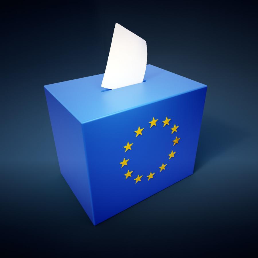wybory euro 2