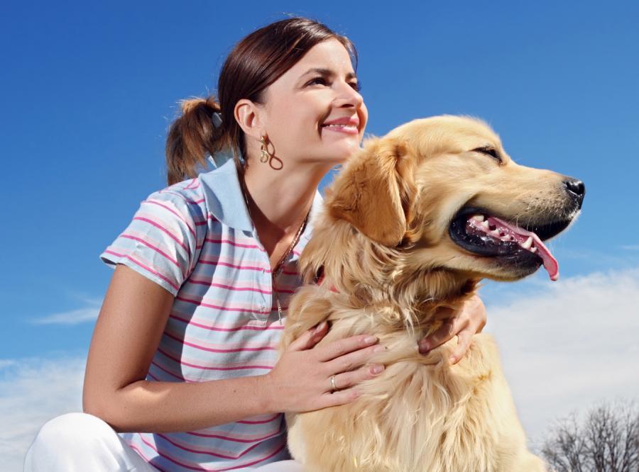 Pomóż swemu zwierzakowi przetrwać kryzys