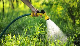 Wąż ogrodowy. Podlewanie ogródka. Podlewanie działki. Woda