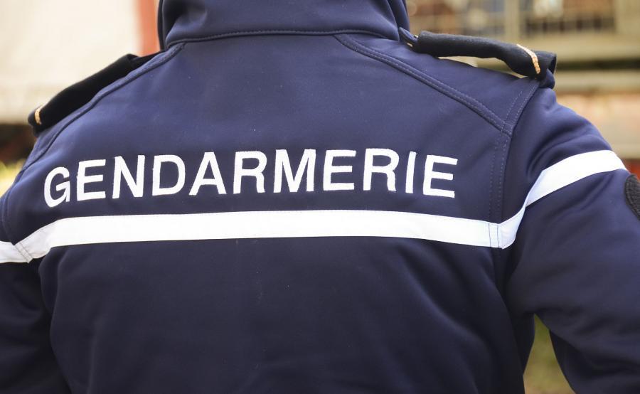 Francuski żandarm