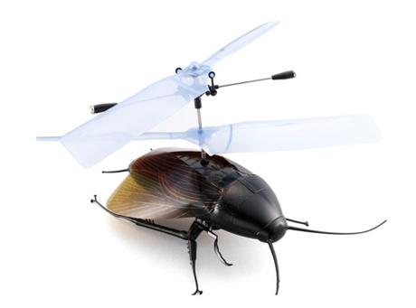 Zostań pilotem karalucha