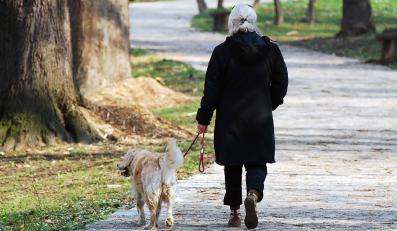 Spacery z psem gwarantują świetną kondycję organizmu
