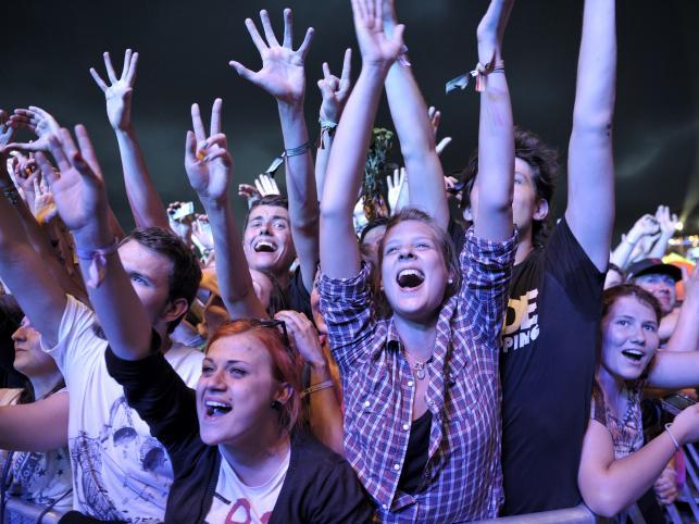Publiczność podczas koncertu The National