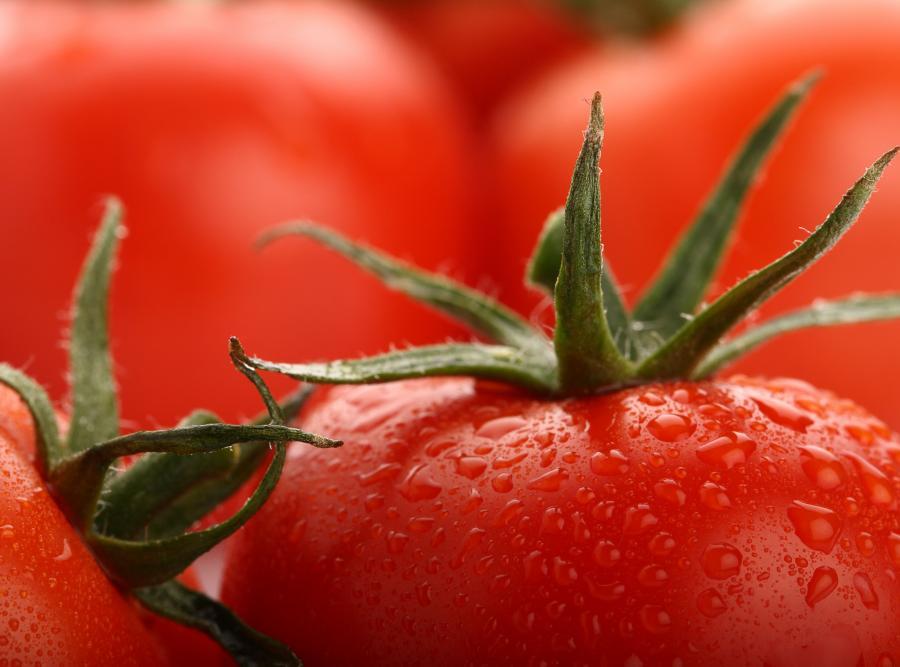 Pomidor ekologiczny ma więcej witaminy C niż z tradycyjnej uprawy