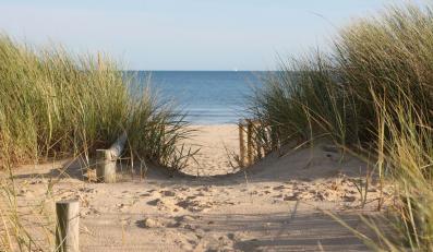 """""""Plaża to nie piaskownica, dajmy wydmom rosnąć"""
