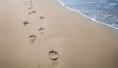 Plaża (zdjęcie ilustracyjne)