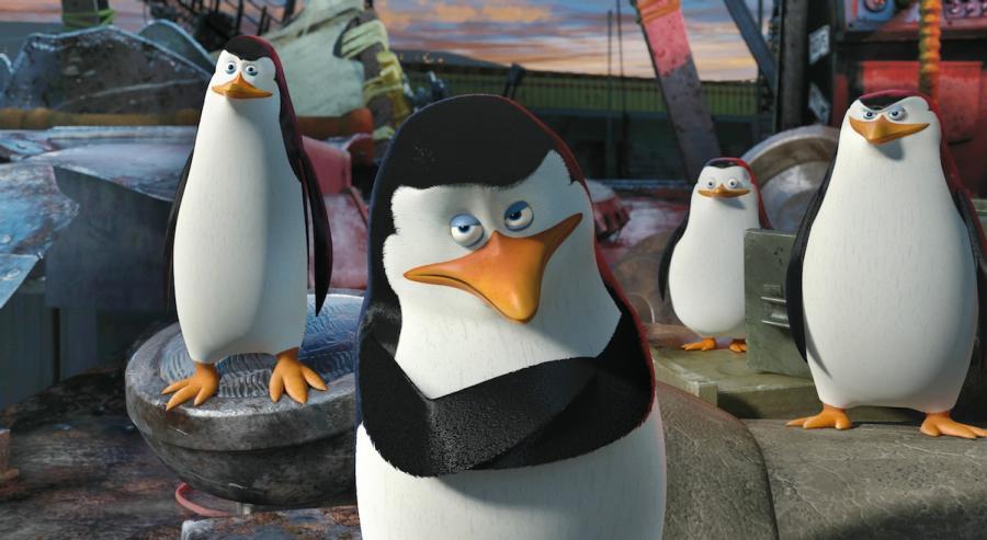 """""""Madagaskar 3"""" – pingwiny i spółka teraz na DVD"""