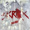 "9. Skrillex – ""Bangarang"""