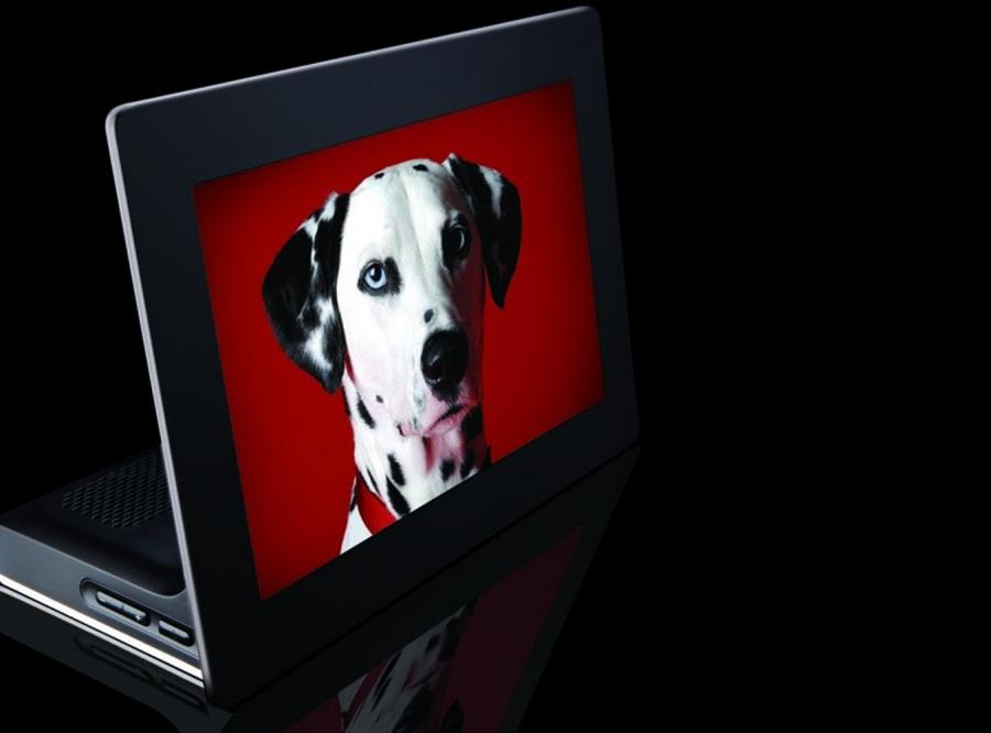 Pierwsza na świecie OLED-owa ramka foto