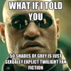 """""""Pięćdziesiąt twarzy Greya"""" – najlepsze memy z sieci"""