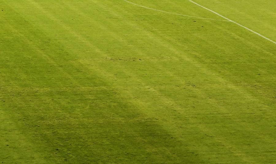 Swastyka na murawie stadionu w Splicie