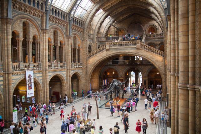 Muzeum Historii Naturalnej w Londynie