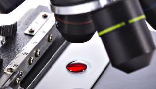 Kropla krwi pod mikroskopem