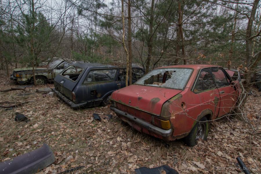 Cmentarzysko samochodów pod Warszawą