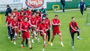 Piłkarze reprezentacji Węgier
